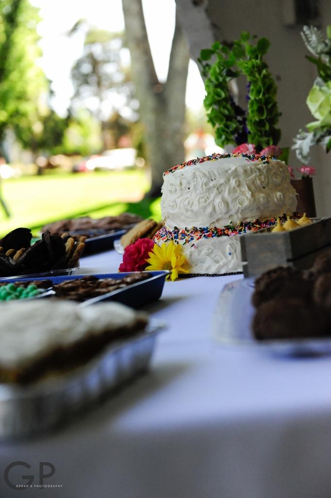 Wedding Photos 231