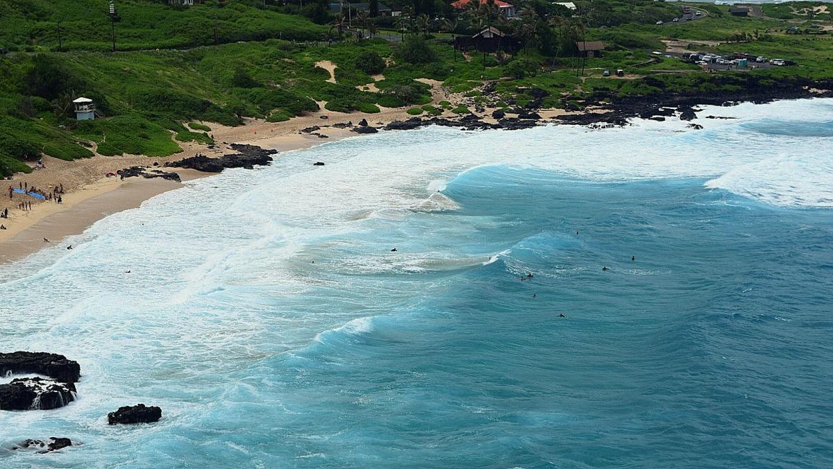 tiny surfers