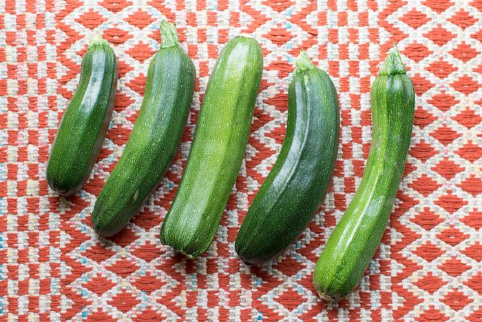 zucchini-0679
